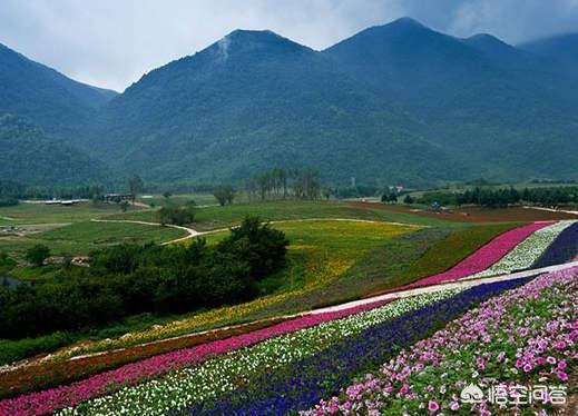 请问重庆什麽时候是适合旅游的季节?
