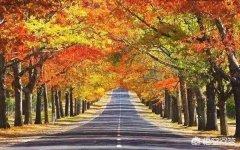 十月份有哪些必去的旅游景区?