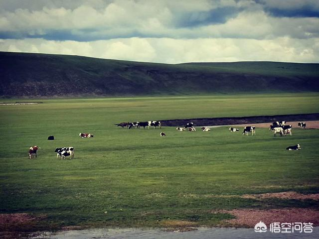 山东省临沂市去呼伦贝尔大草原自驾游,应该怎