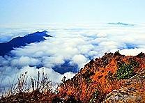八月份,湖南人避暑最好的景点是哪里?