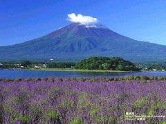 请帮我做一份夏天去日本北海道,东京,京都旅