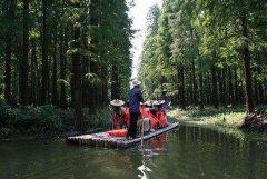 江苏省境内以及周边适合春节旅游的地方