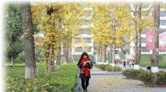 重庆大学城打卡推荐地有哪些,准备12月6号去看